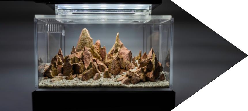skleněné terárium moderní sipka